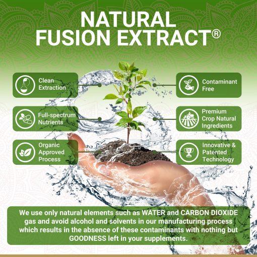 True Veda Organic Amla Natural Fusion Extract