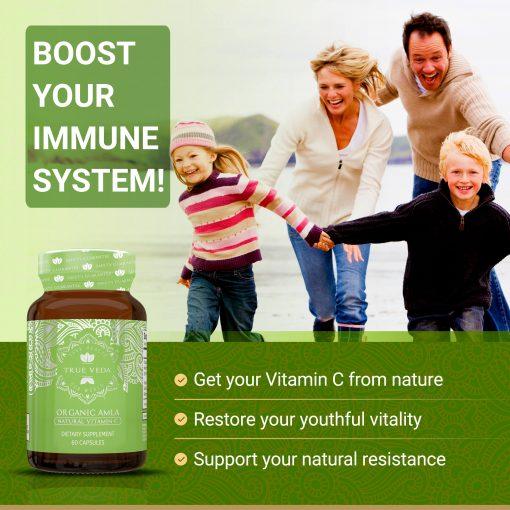 True Veda Organic Amla Features